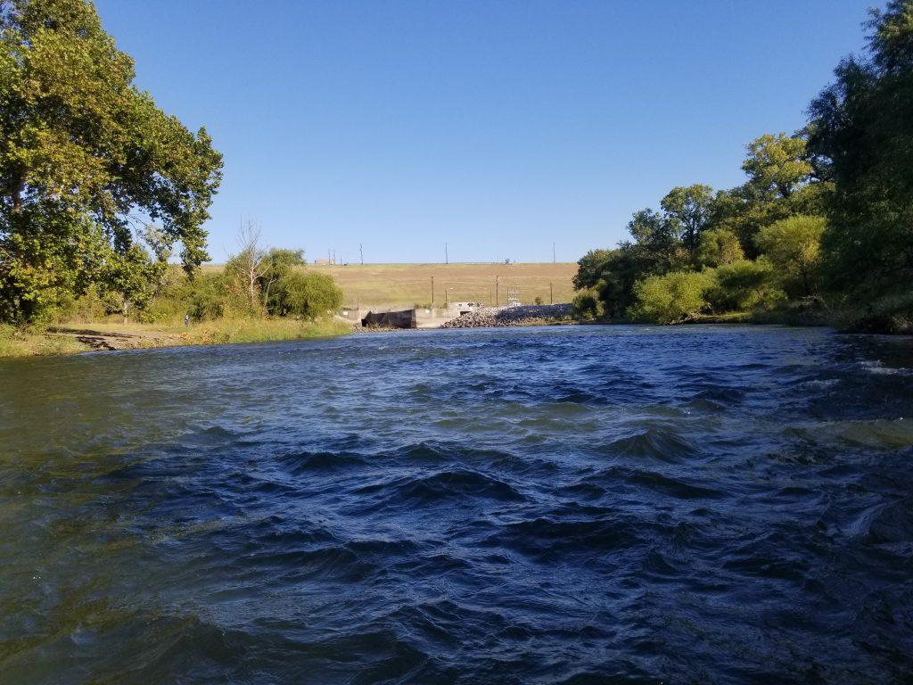 Elm Fork river report